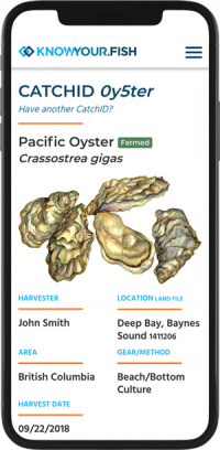 KYF-iPhone-Oyster