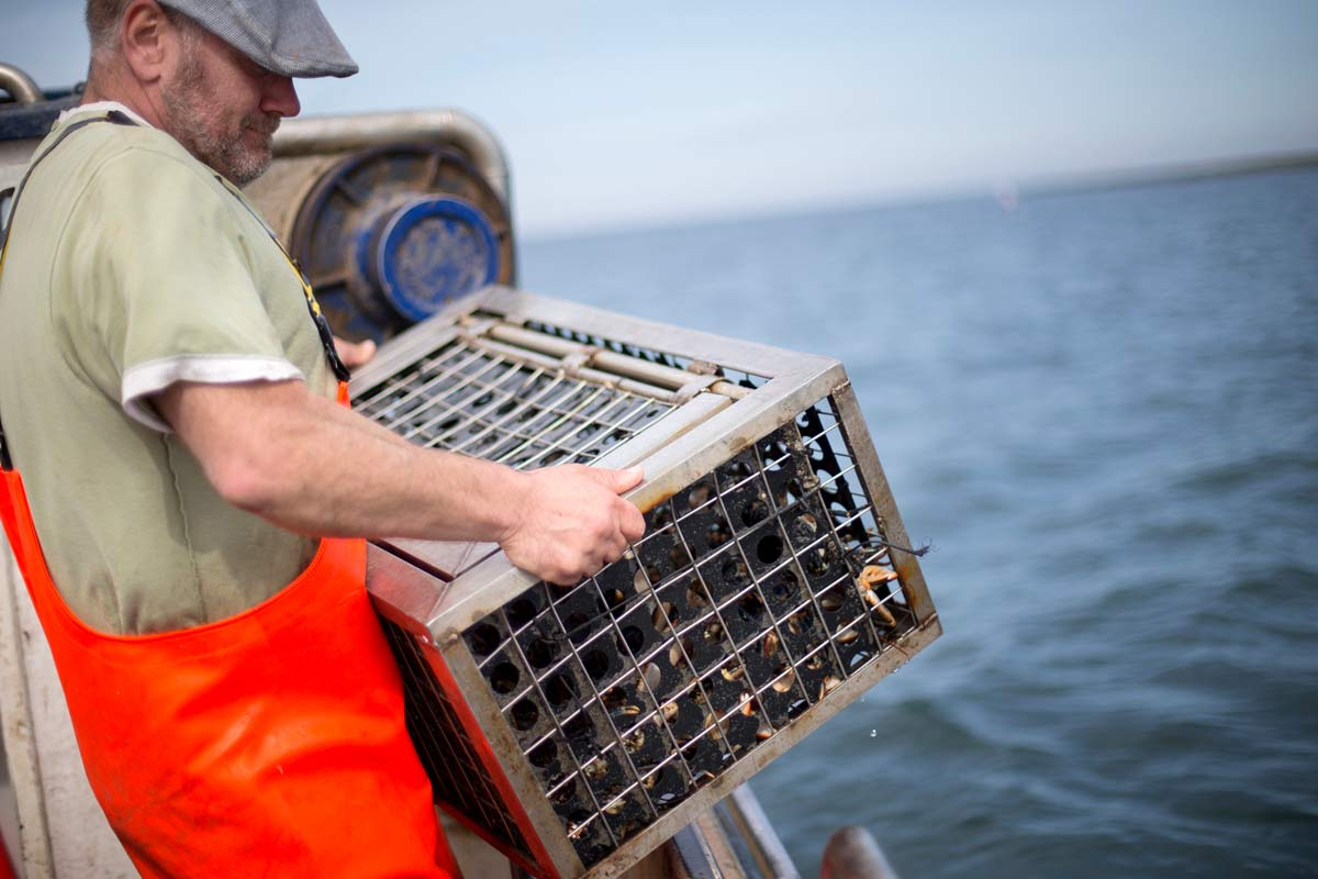 fisherman on vessel with trap